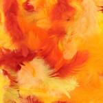 Plumes colorées 10 g - Jaune