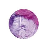 Plume décorative 3-10cm sachet de 10 assorties - Lilas