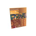 BLOC PASTEL PASTELMAT 360G 24X30 NOUV TEINT